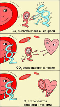 http://www.cirlab.ru/upload/medialibrary/6b2/6b2405456962ba9a6cbb723dd8b6f84d.jpg